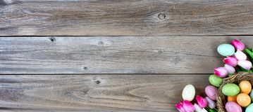 Easter eggs inside bird nest with tulips on lower right corner o. Nest filled with colorful eggs and pink tulips in lower right corner on weathered wooden boards Royalty Free Stock Photography