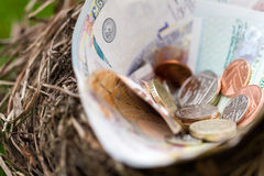 Nest filled with money not eggs Stock Photo