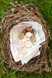Nest filled with money not eggs, overhead Royalty Free Stock Photos