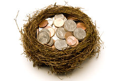Nest Full of Money for Savings. A little bit of security nestled in a nest.  Everyone tries to have a little bit of savings.  Isolated.  Studio shot Stock Photos