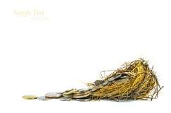 Nest Full of Money for Savings Stock Images