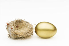 Nest and gold egg Stock Photos
