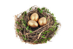 Nest with golden eggs Royalty Free Stock Image