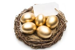 Nest with golden eggs with a tag and place for text on a white background. The concept of successful retirement.  Stock Photo