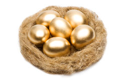 Nest with golden eggs on a white background Royalty Free Stock Photography