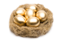 Nest with golden eggs on a white background Royalty Free Stock Photo