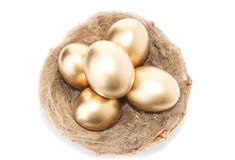 Nest with golden eggs on a white background Stock Photography