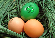Nest with a green egg Royalty Free Stock Photos