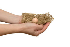 Nest in the hands of Royalty Free Stock Image