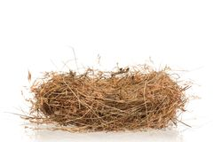 Nest of hay Stock Photography