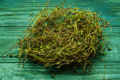 The nest of hay, a bunch of dry grass on a wood background Royalty Free Stock Image