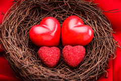 Nest with hearts. Little cozy nest with four red hearts. Family concept - attachment parenting. Parents and children Stock Photos