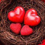 Nest with hearts. Little cozy nest with four red hearts. Family concept - attachment parenting. Parents and children Stock Image