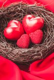 Nest with hearts. Little cozy nest with four red hearts. Family concept - attachment parenting. Parents and children Royalty Free Stock Photo