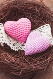 Nest with hearts Stock Images