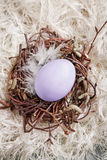 Nest With lavender Egg. Colored egg in a small nest with wool background Stock Images
