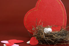 Nest of Love Royalty Free Stock Image