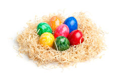 Easter - Colorful Eggs in a Wood Wool Nest Royalty Free Stock Photo