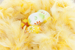 Nest made of feathers with easter eggs Royalty Free Stock Image