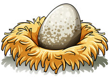 Nest met een ei Stock Afbeeldingen