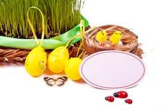 Nest met eieren en kuikens Compisition van Pasen Royalty-vrije Stock Afbeeldingen