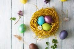 Nest met geschilderde eieren Hoogste mening Royalty-vrije Stock Afbeeldingen