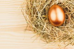Nest met gouden kippenei Royalty-vrije Stock Foto