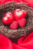 Nest met harten Royalty-vrije Stock Foto