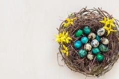 Nest met kleine eieren Stock Afbeeldingen