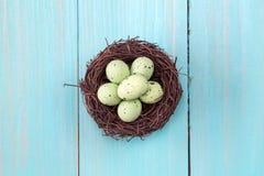 Nest met kleine eieren Royalty-vrije Stock Afbeeldingen