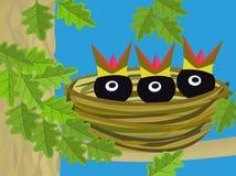 Nest met kuikens Royalty-vrije Stock Foto's