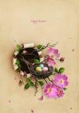 Nest met paaseieren Stock Afbeelding