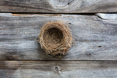 Nest for metaphor of genuine comfortable home or sustainable investment Stock Image