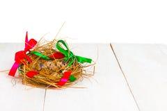Nest mit Ostereiern Stockbilder