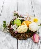 Nest mit Ostereiern Lizenzfreies Stockbild