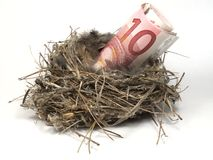Nest for money. Some euro bank notes into a natural nest isolated on white Royalty Free Stock Photo