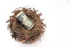 Nest of Money Stock Photo