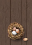 Nest with natural eggs lying on dark wooden desk, illustration Royalty Free Stock Image