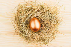 Nest with one gold egg. In the center on the wooden background royalty free stock photography