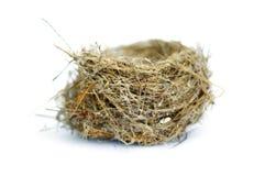 Nest op wit Royalty-vrije Stock Foto's