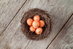 Nest with painted Easter eggs Royalty Free Stock Images