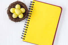 Nest with painted eggs and blank notebook Stock Photo