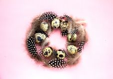 Easter egg wreath Festive Easter concept. Nest of quail eggs and feathers on pink Easter background top view Copy Space Easter egg wreath royalty free stock photo