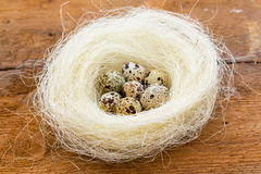 Nest with quail eggs on the unpainted brown old wooden background. Stock Photos
