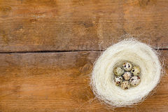 Nest with quail eggs on the unpainted brown old wooden background. Stock Images