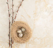 Nest with quail eggs and willow twigs on the background of marbl. E. top view. copy space Stock Photos