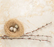 Nest with quail eggs and willow twigs on the background of marbl. E. top view. copy space Royalty Free Stock Photos