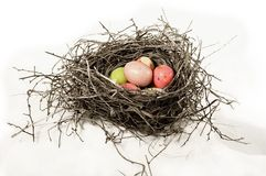 Nest with robins eggs. Twig nest filled with colorful robins eggs candy stock photography