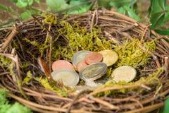 Nest of savings Stock Image