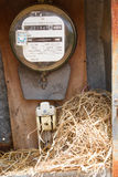 Nest of a sparrow in a cabinet with electrical meter Royalty Free Stock Images
